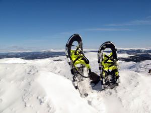 snowshoes niseko ski rental