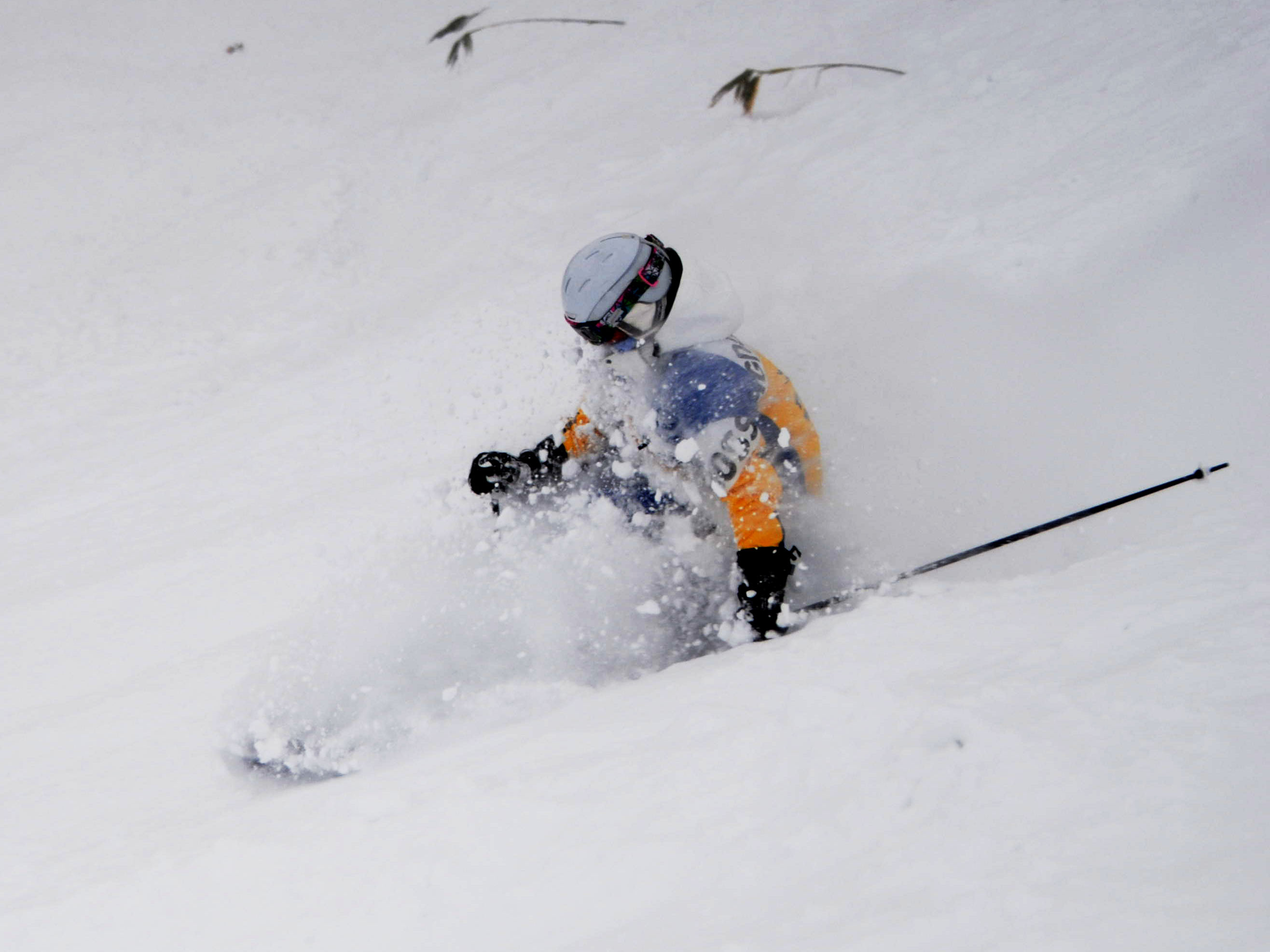 Powder Ski Lessons